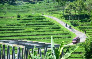 Bojong Tegal
